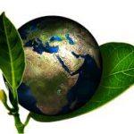 環境新聞の宿題で参考になるもの(小学生)