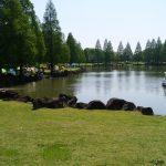 加須はなさき公園で公園遊びにバーベキューで充実した休日を