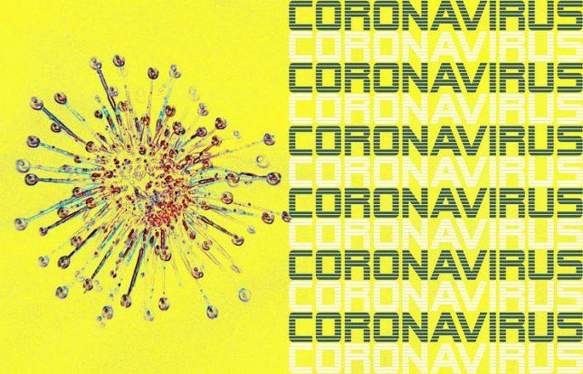 コロナウイルス抗体検査